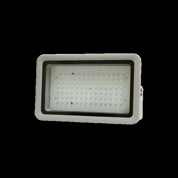 ROADWAY LIGHTING - LED FLOOD LIGHT